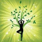tree and yogi